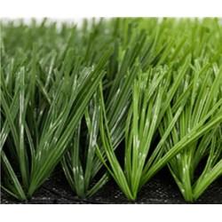 cỏ nhân tạo sân bóng đá mini thương mại 50gale 8900