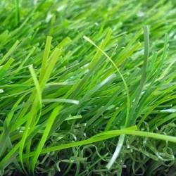 cỏ nhân tạo sân vườn 30lxc53