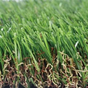 cỏ nhân tạo sân vườn pq00t05
