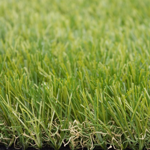 cỏ sân tập golf pq004